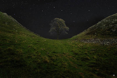 Photograph - Sycamore Gap Stars by John Meader