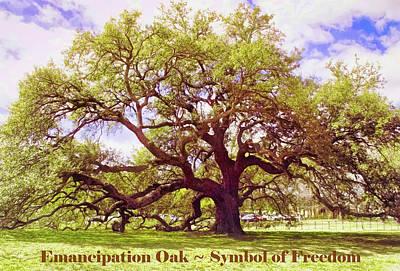Mellow Yellow - Symbol of Freedom - Emancipation Oak  by Ola Allen