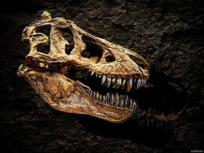 Photograph - T-rex Skull 2 by Weston Westmoreland