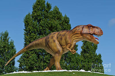Photograph - T-rex Statue In Lourinha by Angelo DeVal