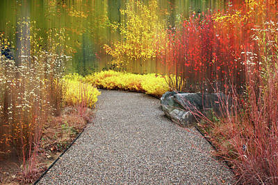 Photograph - Intimate Autumn Trail  by Jessica Jenney