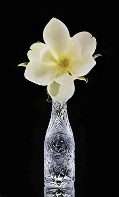 Photograph - Tall Crystal Magnolia Still Life by JC Findley