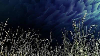 Digital Art - Tall Grass Abstract by Richard Farrington