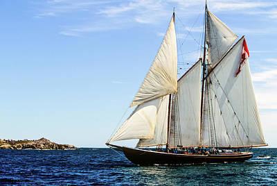 Leaf Photograph - Tall Ship Bluenose, Louisbourg, Cape by Barrett & Mackay