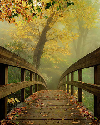 Tanawha Trail Blue Ridge Parkway - Foggy Autumn Art Print
