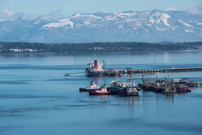 Photograph - Tankers At March's Point by Tom Cochran