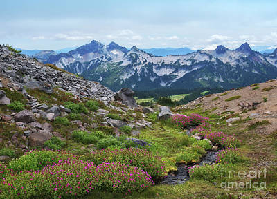 Photograph - Tatoosh Mountain Range by Sharon Seaward