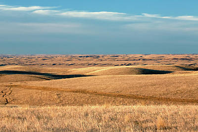 Photograph - Tattnall Fields by Todd Klassy