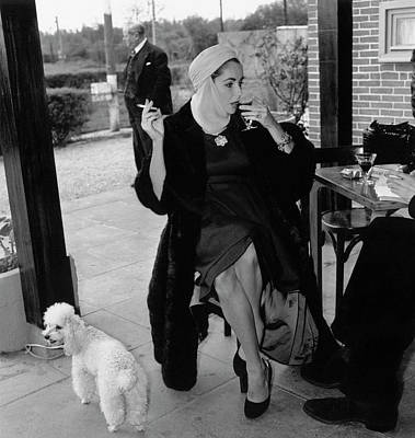 Drinking Photograph - Taylor And Poodle by Stanley Sherman