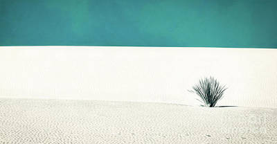 Photograph - Teal Skies In White Sands by Doug Sturgess