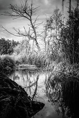 Photograph - Tegeler Fliess by Ute Herzog