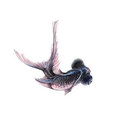 Painting - Telescope Fish by Ina Petrashkevich