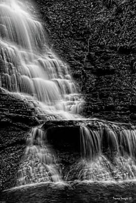 Photograph - Tenacity Of Water by Wesley Nesbitt