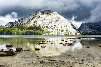 Photograph - Tenaya Lake 2 by Silvia Marcoschamer
