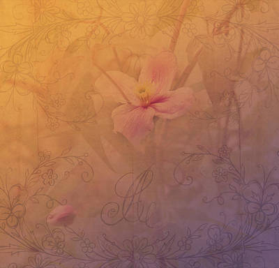 Photograph - Tender Flower From Secret Garden by Jenny Rainbow
