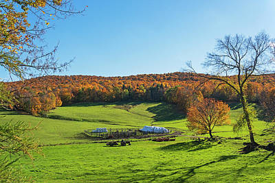 Photograph - Tending To The Farm Woodstock Vermont Vt Vibrant Autumn Foliage by Toby McGuire
