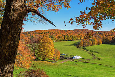 Photograph - Tending To The Farm Woodstock Vermont Vt Vibrant Autumn Foliage Yellow And Orange by Toby McGuire