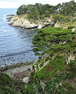 Photograph - Terraced Steps To The Sea by Floyd Snyder