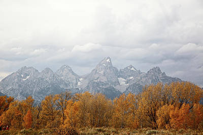 Photograph - Teton Foliage by Jean Clark