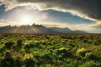 Photograph - Teton Spring 3 by Leland D Howard