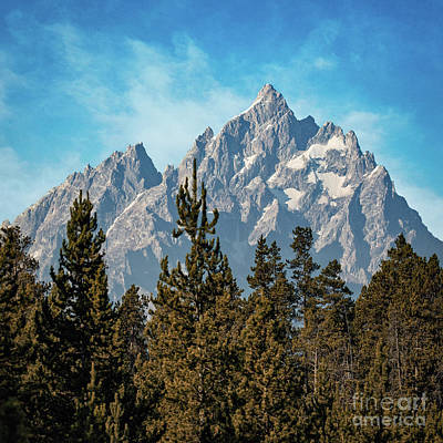 Photograph - Tetons From Signal Lodge by Doug Sturgess