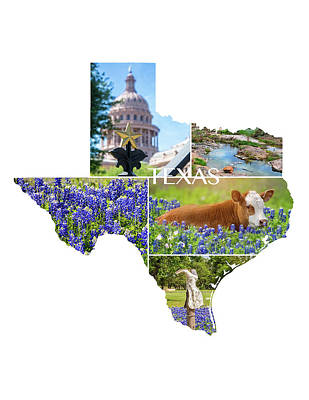 Photograph - Texas State Shaped Collage by Lynn Bauer