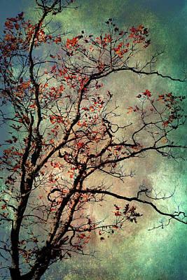 Mixed Media - Textured Oak Tree Art by Christina Rollo