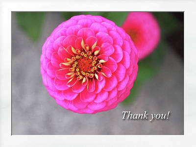 Digital Art - Thank You by Jacqueline Sleter