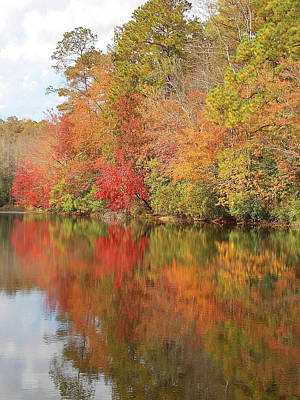 Photograph - Thanksgiving Week Fall Color by Matthew Seufer