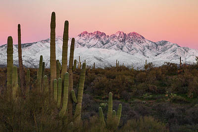 Photograph - The Arizona Alps by Rick Furmanek