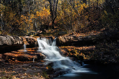 Photograph - The Autumn Cascades Of Arizona  by Saija Lehtonen
