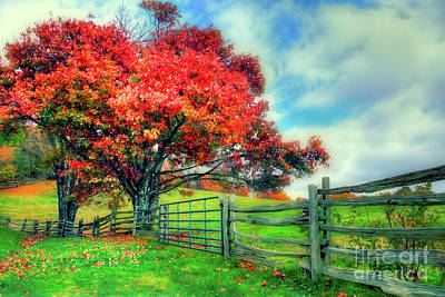 Photograph - The Beauty Of A Blue Ridge Autumn Fx by Dan Carmichael