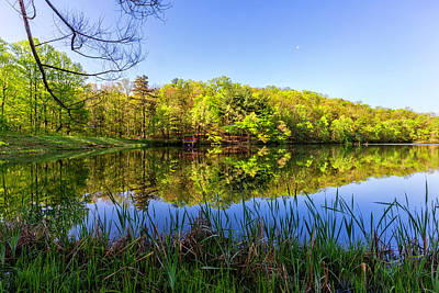 Photograph - The Beauty Of A Blue Sky by Debra and Dave Vanderlaan
