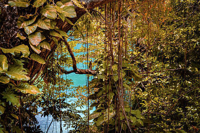 Photograph - The Blue Lagoon by Debbie Ann Powell