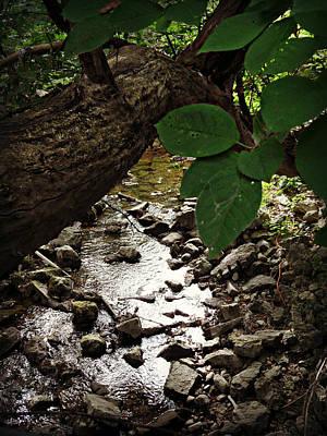 Photograph - The Bluesy Bubbling Brook by Cyryn Fyrcyd