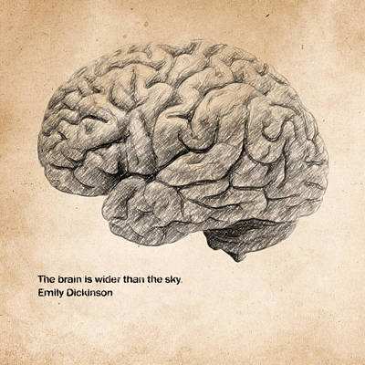 Sky Drawing - The Brain Is Wider Than The Sky by Zapista Zapista