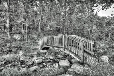 Photograph - The Bridge At Sawmill by Dawn J Benko