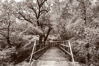 Photograph - The Bridge To Ben Nevis In Soft Sepia by Debra and Dave Vanderlaan