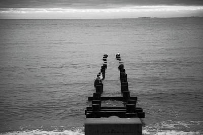 Photograph - The Calming Coast by Karol Livote