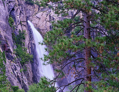 Photograph - The Cascades From Yosemite National by Tim Fitzharris/ Minden Pictures
