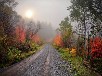 Photograph - The Dirt Road by Leland D Howard