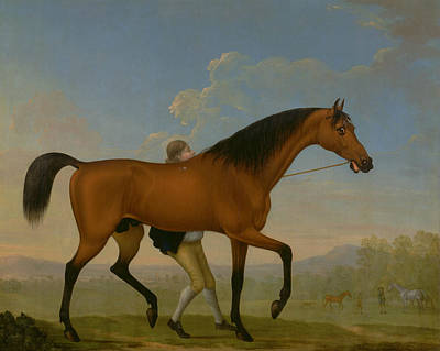 Painting - The Duke Of Ancaster's Bay Stallion, Blank, Walking Towards A Mare by William Shaw