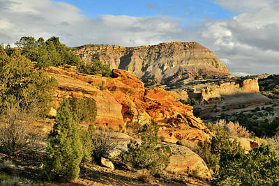 Photograph - The East End Of Colorado National Monumentt by Ray Mathis