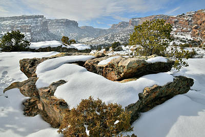Photograph - The East Entrance To Colorado National Monumentr by Ray Mathis