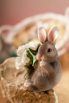 Photograph - The Easter Bunny by Christine Sponchia