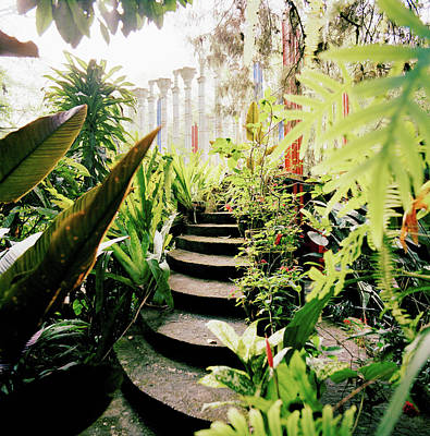 Latin America Photograph - The Edward James Surrealist Gardens At by Cultura Rm Exclusive/philip Lee Harvey