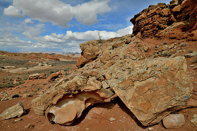Photograph - The Entrance To County Road 1028 Along San Rafael Swell by Ray Mathis