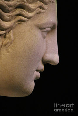 Abstract Shapes Janice Austin - The Face of Aphrodite Closeup of Marble Statue at Pompeii Exhibit by Colleen Cornelius