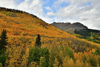 Photograph - The Fall Colors Along Highway 550 In Colorado by Ray Mathis