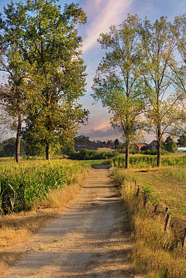 Photograph - The Farm Lane In The Sunshine by Debra and Dave Vanderlaan